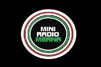 Mini Radio Meana logo