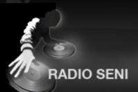 Radio Seni logo