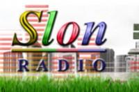 Radio Slon logo